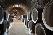 pic of wine cellar  - The Warehoused barrels in the wine cellar - JPG