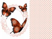 stock photo of doilies  - A presentation slide depicting three beautiful copper and black and white butterflies with an oval peach colored doily frame - JPG