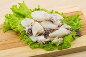 stock photo of cuttlefish  - Raw cuttlefish with herbs on the wood background - JPG