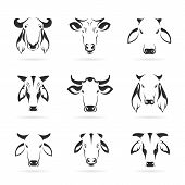 stock photo of cow head  - Vector set of cow head on white background - JPG
