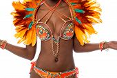stock photo of samba  - Cropped image of a woman samba dancer - JPG