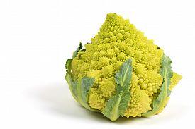 stock photo of romanesco  - Romanesco broccoli or Roman cauliflower isolated on white background - JPG