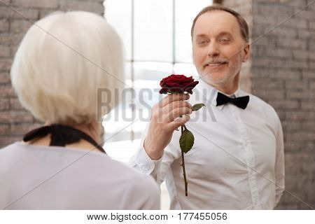 Love for all ages. Positive delighted cute elderly man taking part in the art performance with senior woman in the dance studio while expressing feelings and holding rose