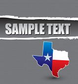 lonestar state gray ripped template