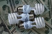 Cfl Bulbs And Money