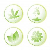 Green or eco icon set with leaf and palm tree illustrated design