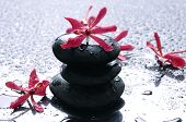 picture of flower arrangement  - Balance with red flower - JPG