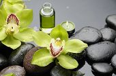 bottle of essential oil and black stones with green orchid