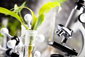 Ecology laboratory