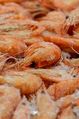 Macro Photo Fresh Thawed Delicious Shrimp With Twisted Tails Close-up. Macro Photo Of A Counter With poster