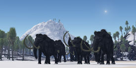 foto of gentle giant  - A herd of Woolly Mammoths migrate to a warmer climate in the Pleistocene Age - JPG