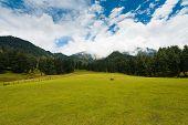 Kashmir Aru Valley Pahalgam Hill Mountain Nature