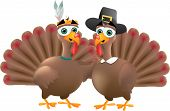 Indian And Pilgrim Turkeys