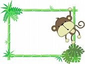 Cute baby monkey vector frame