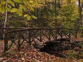 Log-Brücke im Herbst