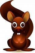 cute squirrel cartoon