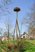 pic of polonia  - the famous Village of Storks Zywkowo in Polonia - JPG