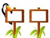 cute toucan bird sitting on a blank wooden sign board