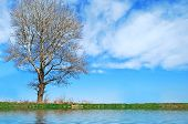 Beautiful River Side Landscape Picture