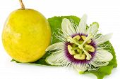 stock photo of climber plant  - Passion fruit flower with ripe passion fruit isolated on white background - JPG
