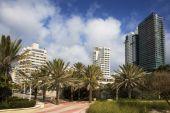 Along Miami's South Beach
