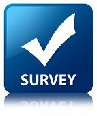 Survey (validation icon) Glossy Blue Reflected Square Button