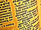 Dictionary Diligent