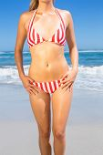 Mid section of fit woman in bikini on the beach on a sunny day