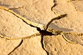 Close Up  Dry Cracked Ground