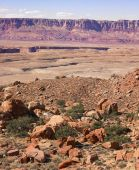 Desert Landscape With Plateau In Background