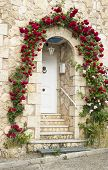 House door with roses
