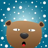Brown bear with snow