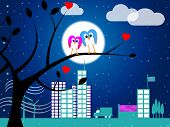 Love Night Indicates Flock Of Birds And Affection