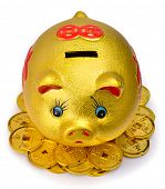 Chinese gold piggy bank and coins