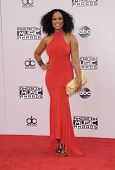 LOS ANGELES - NOV 23:  Garcelle Beauvais arrives to the 2014 American Music Awards on November 23, 2014 in Los Angeles, CA