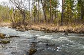 Yenisey River. Stream Uy.