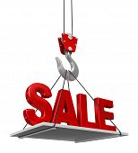 Sale On Crane Hook