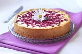 Pie With Cottage Cheese And Redcurrant