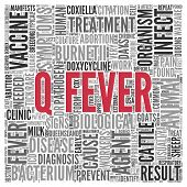 Close up Red Q-FEVER Text at the Center of Word Tag Cloud on White Background.