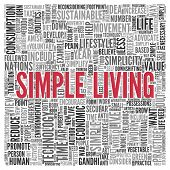 Close up Red SIMPLE LIVING Text at the Center of Word Tag Cloud on White Background.
