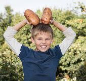 Funny boy in garden poses with huge potatoes harvested. Gardening, harvest and farming concept.
