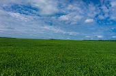 Field Freedom Plain Nature