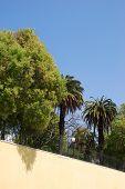Boto Machado jardim em Lisboa