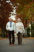 Mature couple in the autumn park