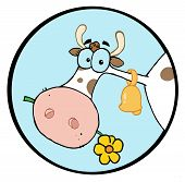 Clipart-Farm Cow Head Chewing On A Flower