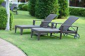 Lounge sunbed in hotel garden