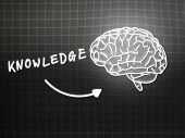 Knowledge Brain Background Knowledge Science Blackboard Gray