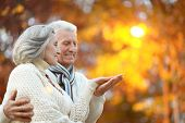 picture of old lady  - Beautiful happy old people in the autumn park - JPG