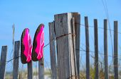 picture of gulf mexico  - Beach shoes drying on a wood weathered fence - JPG