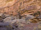 Ding & Dang Canyon